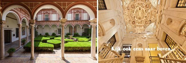 Gratis museo de belles artes afb